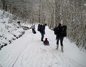bolton abbey strid winter