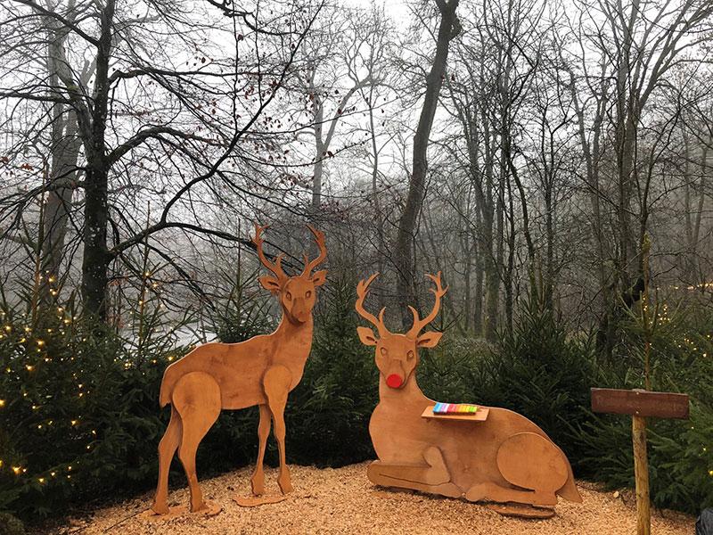 Bolton Abbey reindeer